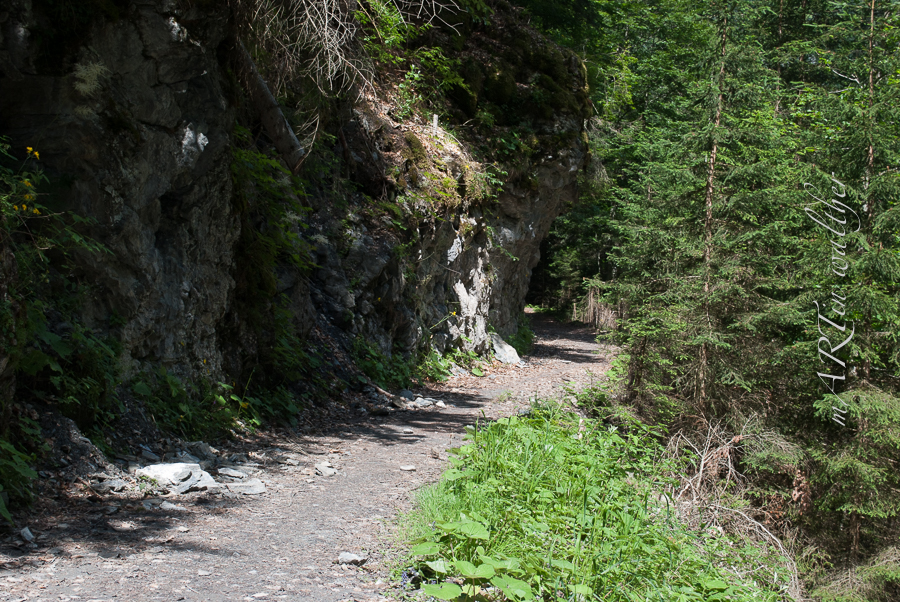 Safiental, Conn, Ruinaulta, Tamins