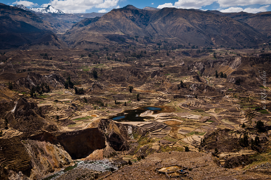 Colca Canyon, Peru, Martin Walther Foto & IT