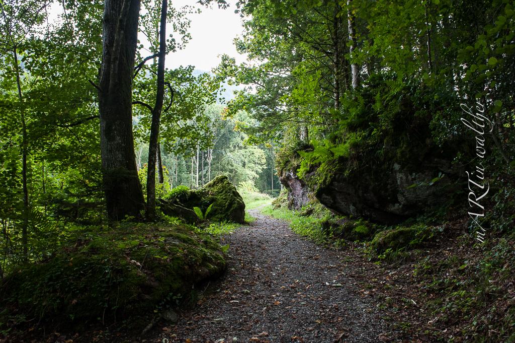 Murgschlucht und Wasserfall
