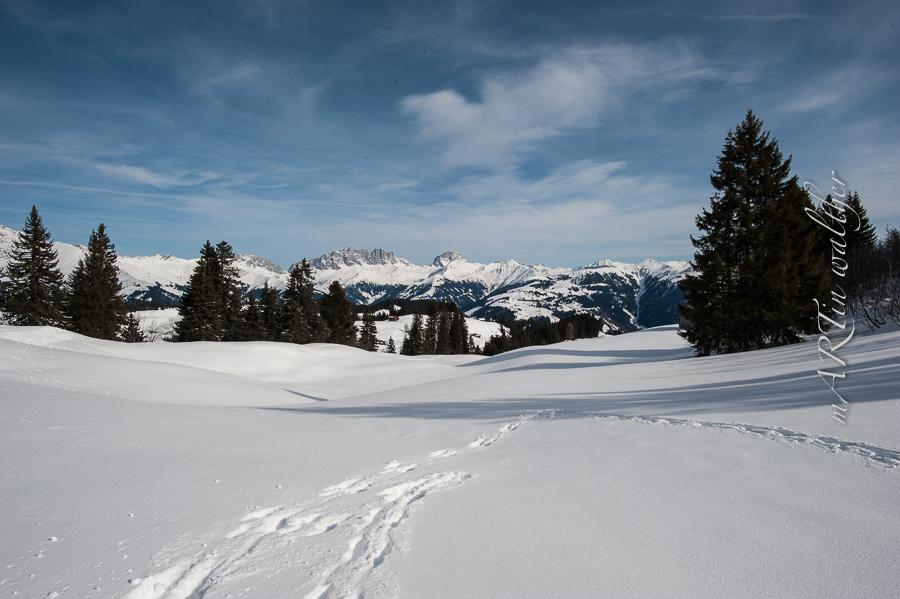 Schneeschuhwanderung Danusa