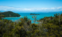 Coast Track, Abel Tasman, Neuseeland, Südinsel, New Zealand