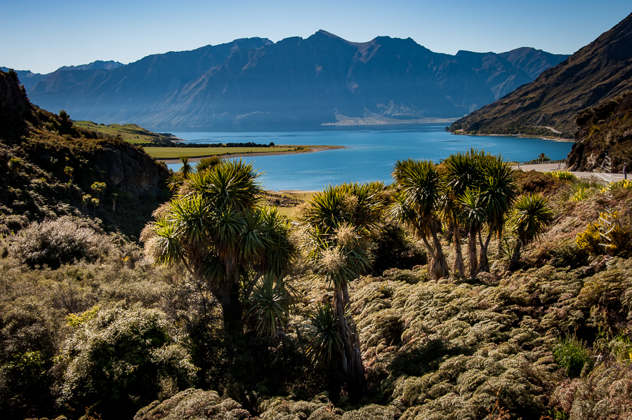Lake Hawea, Otago, Neuseeland, Südinsel, New Zealand