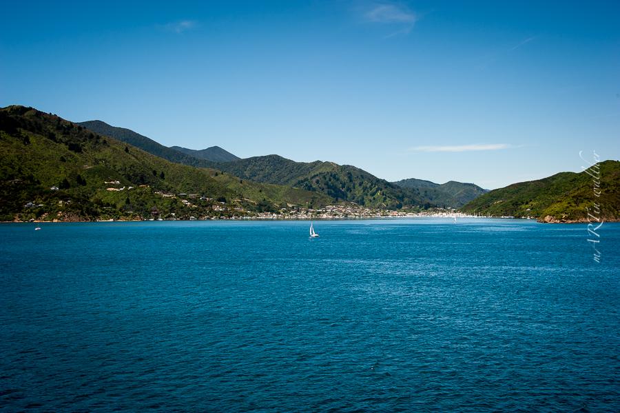 Picton, Marlborough Sounds, Südinsel, Neuseeland, New Zealand