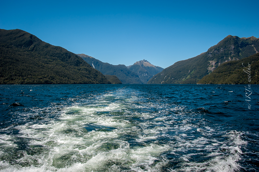 Doubtful Sound, Neuseeland, Südinsel, New Zealand