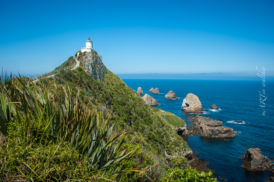 Nugget Point, Catlins, Neuseeland, Südinsel, New Zealand
