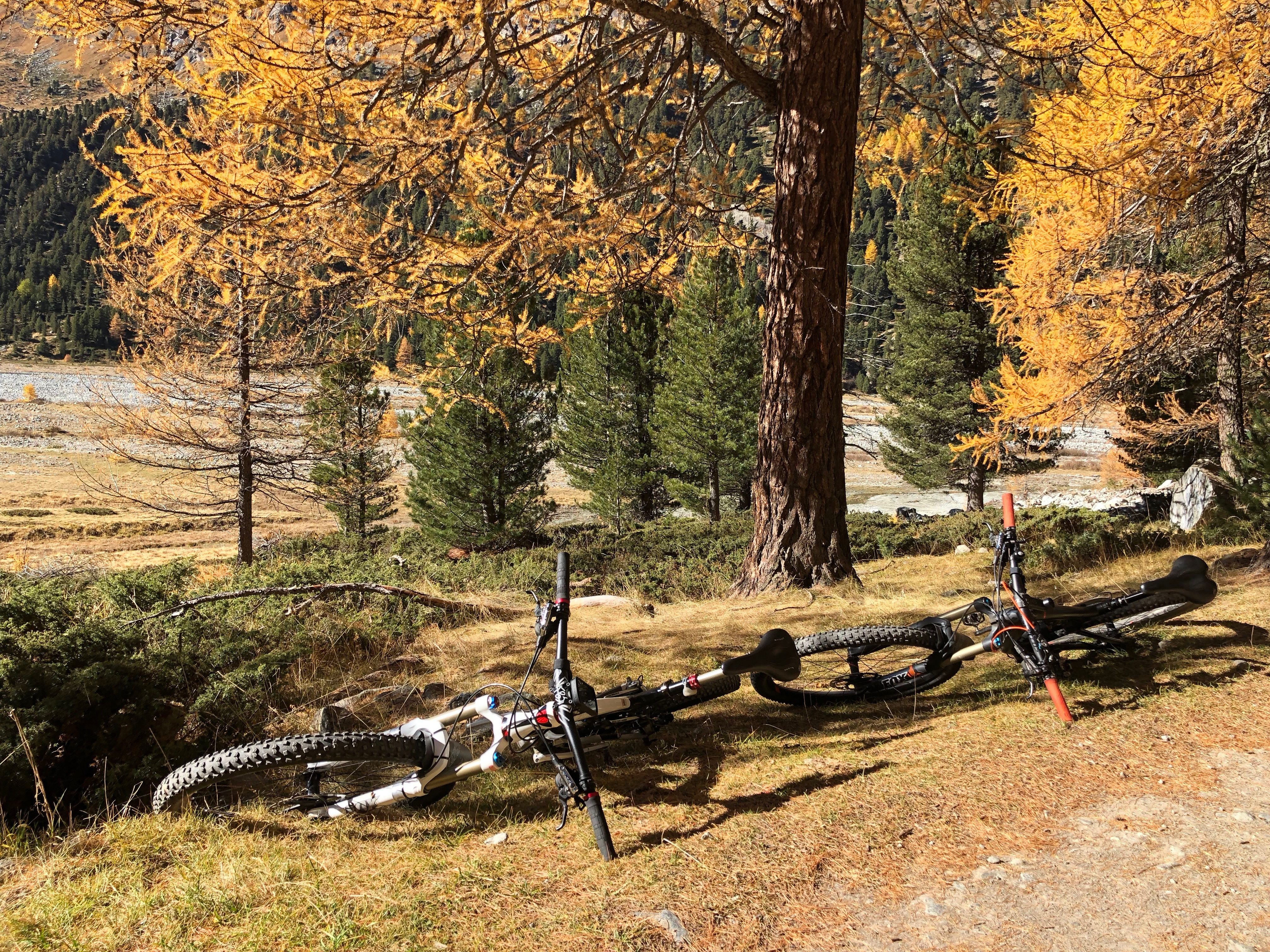 BikeParadies_GR, Engadin, Herbst, Martin Walther Foto & IT, Val Rosegg