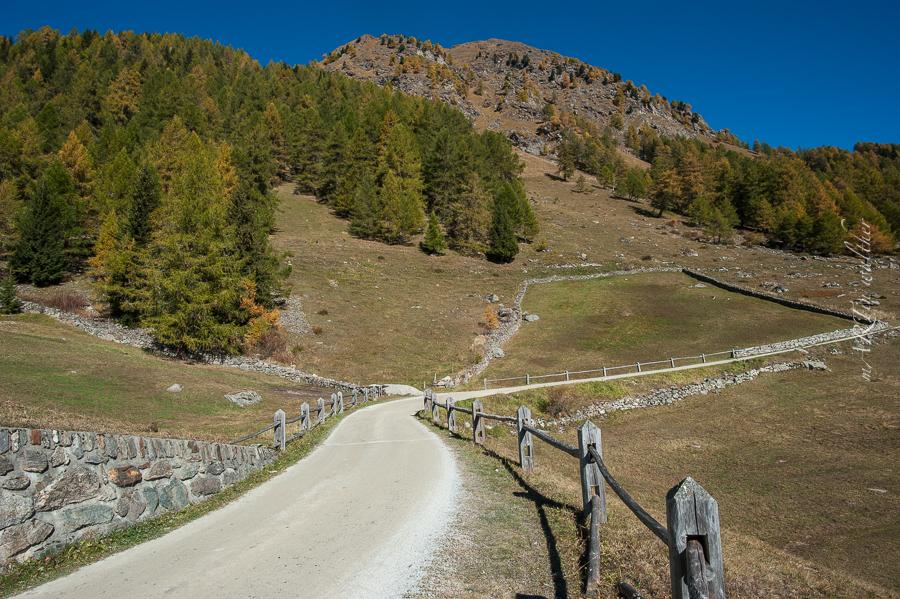 BikeParadies_GR, Herbst, Lagh da Saoseo, Lagh da Val Viola, Martin Walther Foto & IT, Val da Camp, Valposchiavo